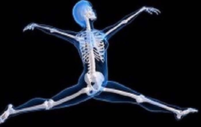 Image result for Bone health